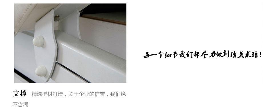 太空软垫豪华SPA床 DS-110011T