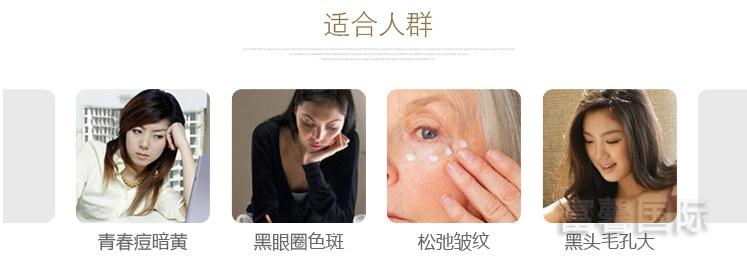 毛刷洁肤美容仪 DS-426021