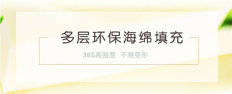 豪华微整注射医美电动床 DS-13808